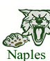 Go to Naples High School Site